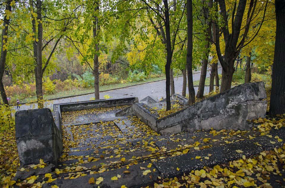 На Дону штрафуют за опавшую листву