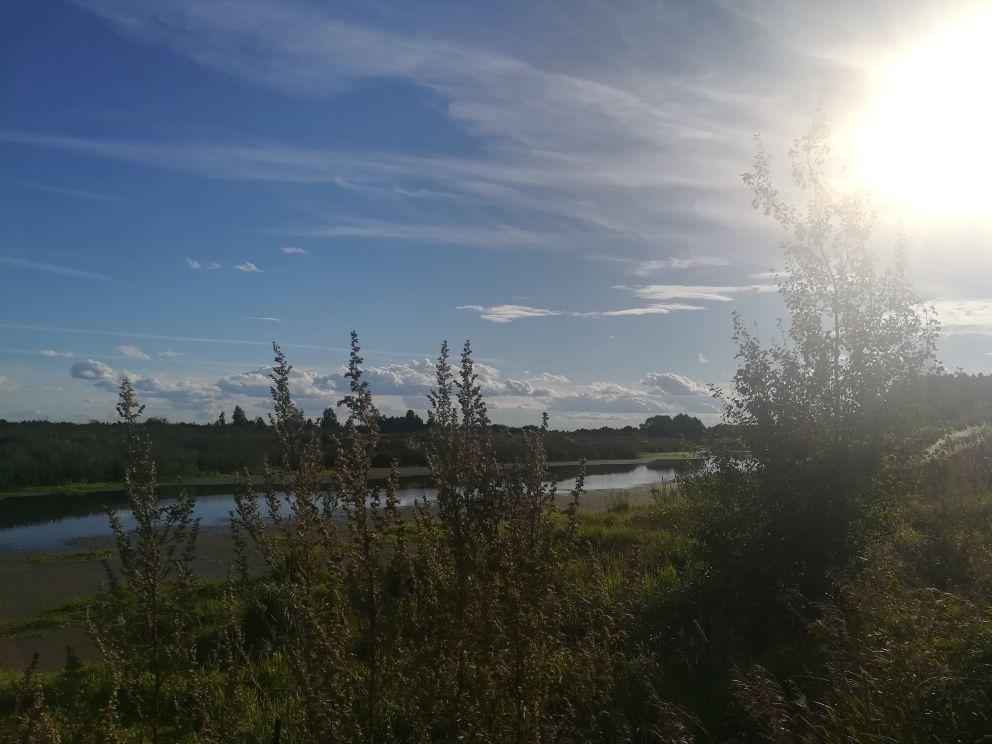 Столичная компания подготовит проект расчистки реки Борзовки - фото 1