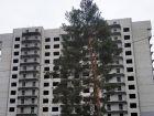 Жилой дом по ул.Минской 43/3 - ход строительства, фото 26, Март 2020